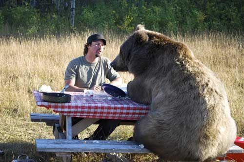 Casey Anderson Bear The Best Bear - Guys best friend bear cutest bromance ever