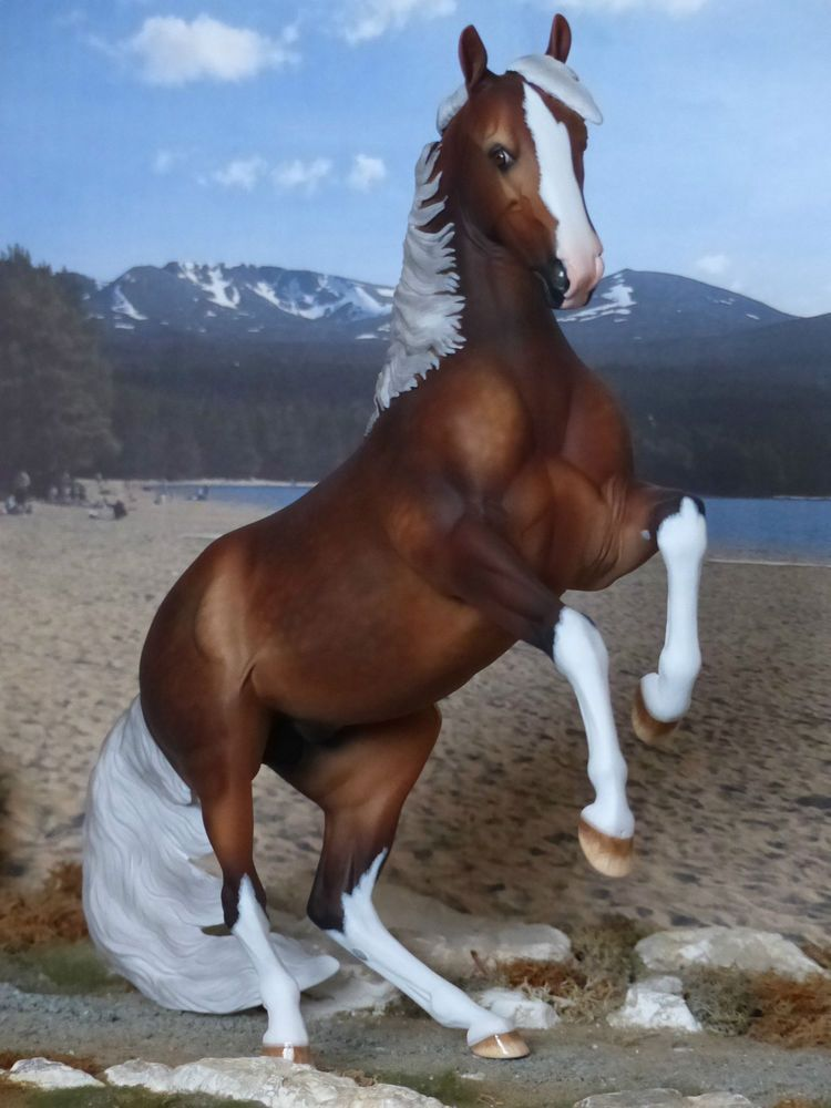 Cm Custom New 2015 Traditional Breyer Picasso Painted To A