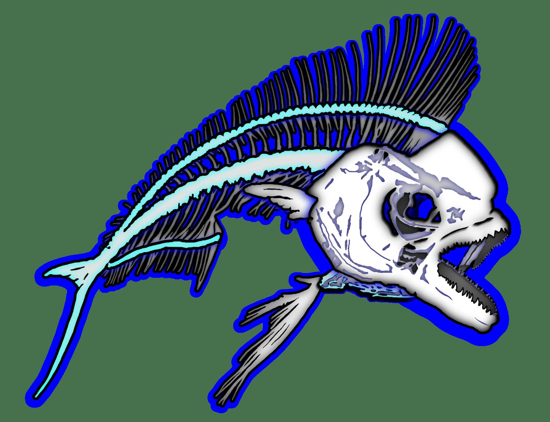 Mahi mahi fish bones skeleton graphic art digitized from