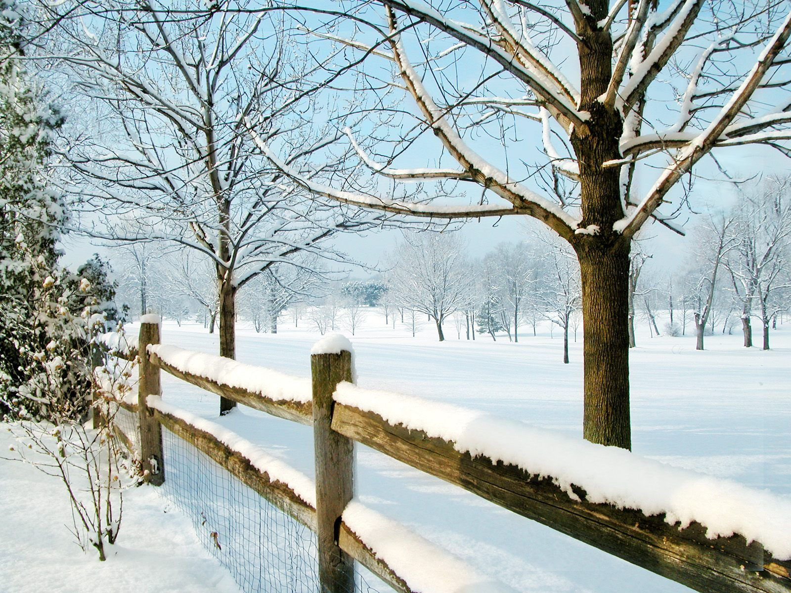 Winter Free Desktop Wallpapers for HD, Widescreen and
