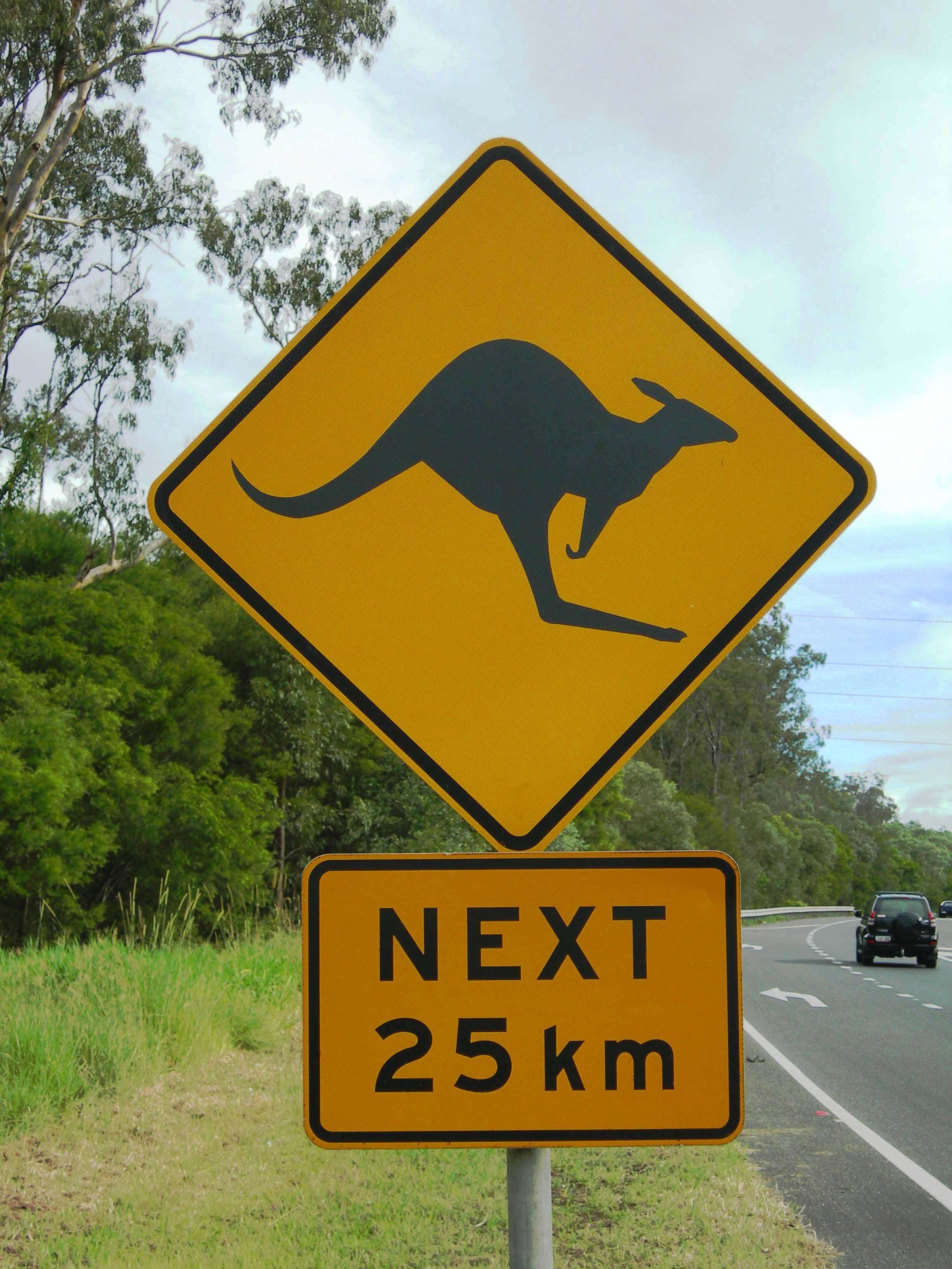 Australia Traffic Sign ! ! ! Discover Australia