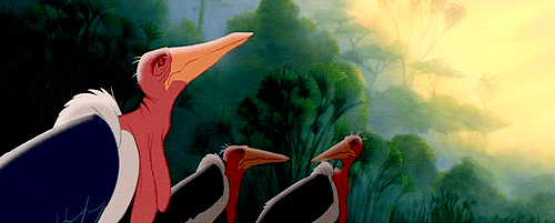 Marabou Stork from The Lion King Google Search Birds