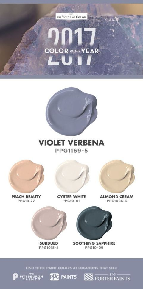 Ppg Voice Of Color S 2017 The Year Is Violet Verbena