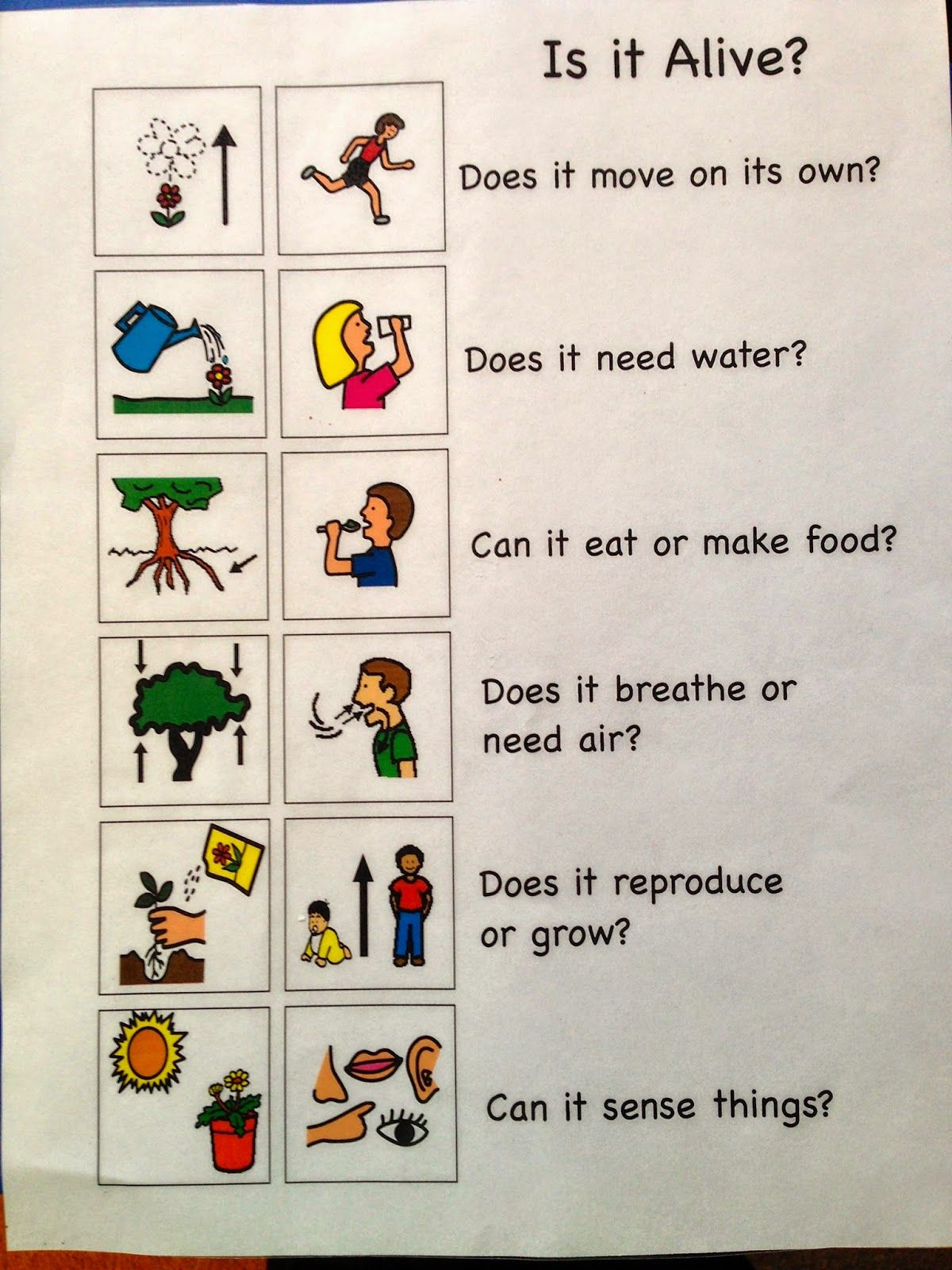 This Is An Example Of A Useful Chart That Children Can