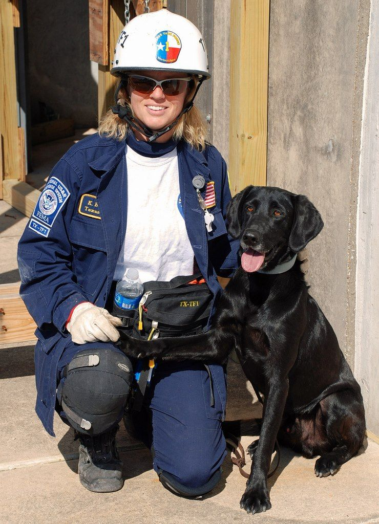 Katie & Ice TEEX Search Dogs Texas Task Force 1
