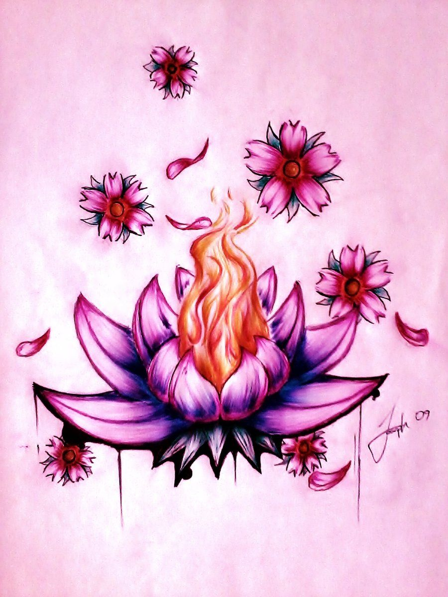 beautiful lotus flower drawing tumblr Google Search