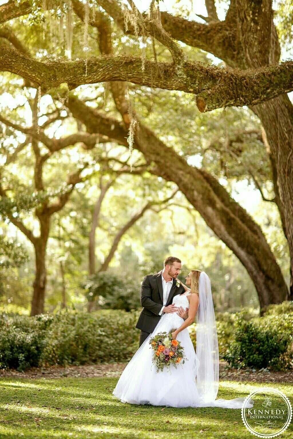 Eden Gardens State Park, Oak tree, fall wedding, outdoor