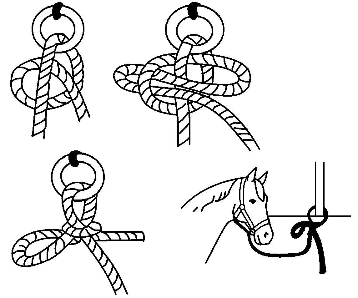 Quick Release Knot Illustration Horsemastership Glenlyon