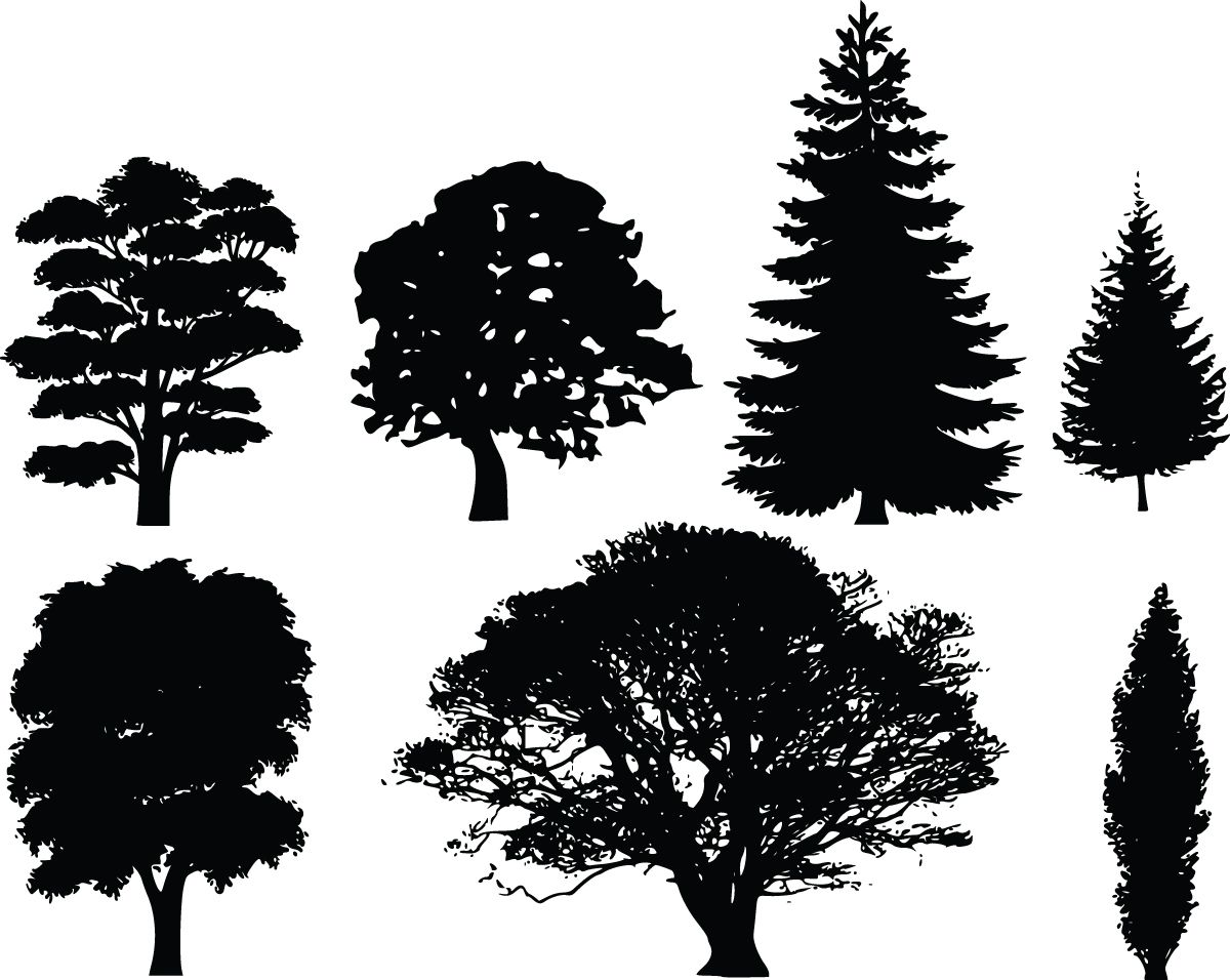 Tree Silhouettes and white tree clip art image of