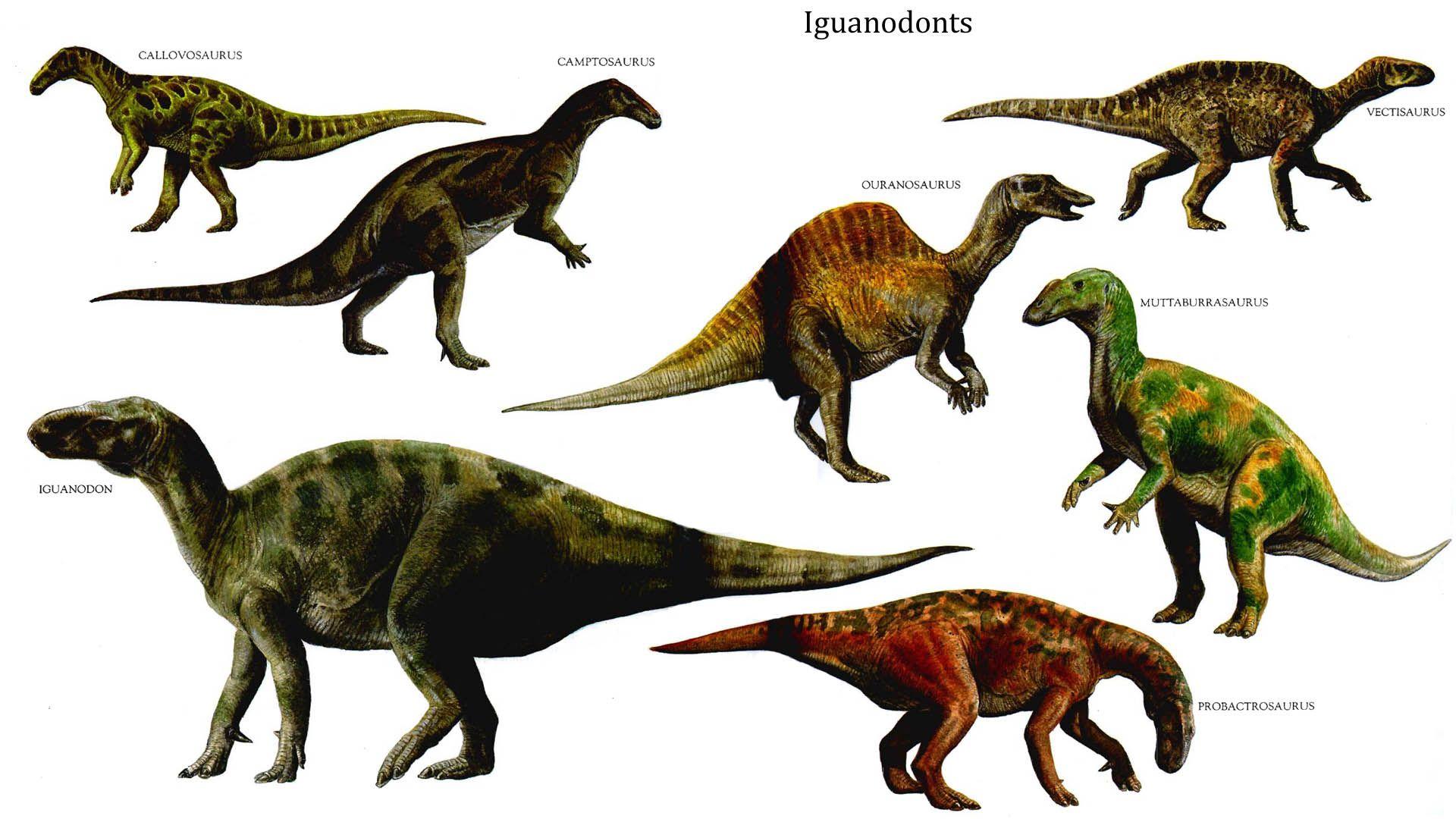 dinosaurs Google Search prehistoric animals