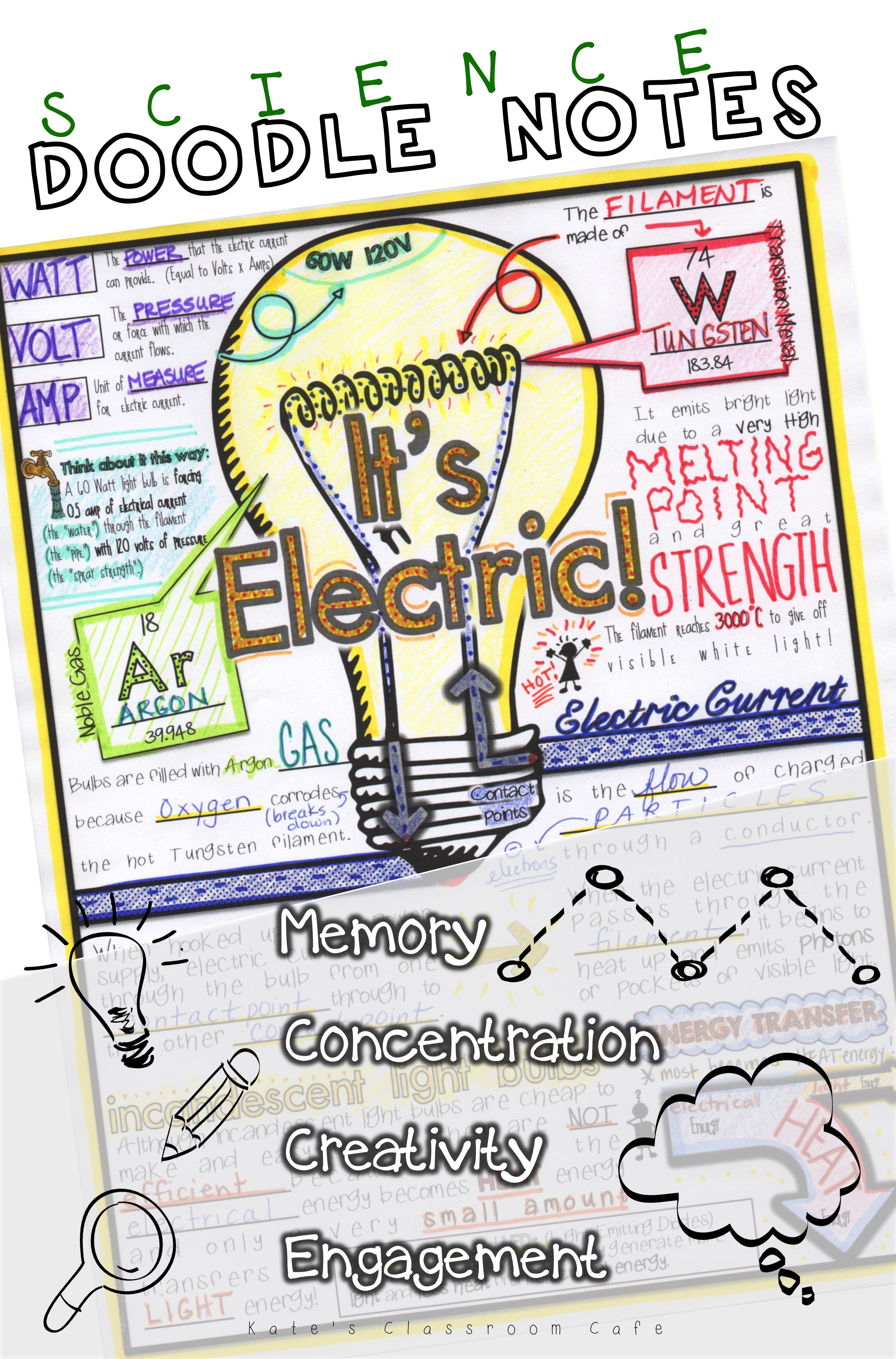 Energy Pyramid Science Doodle Notes Interactive Notebook