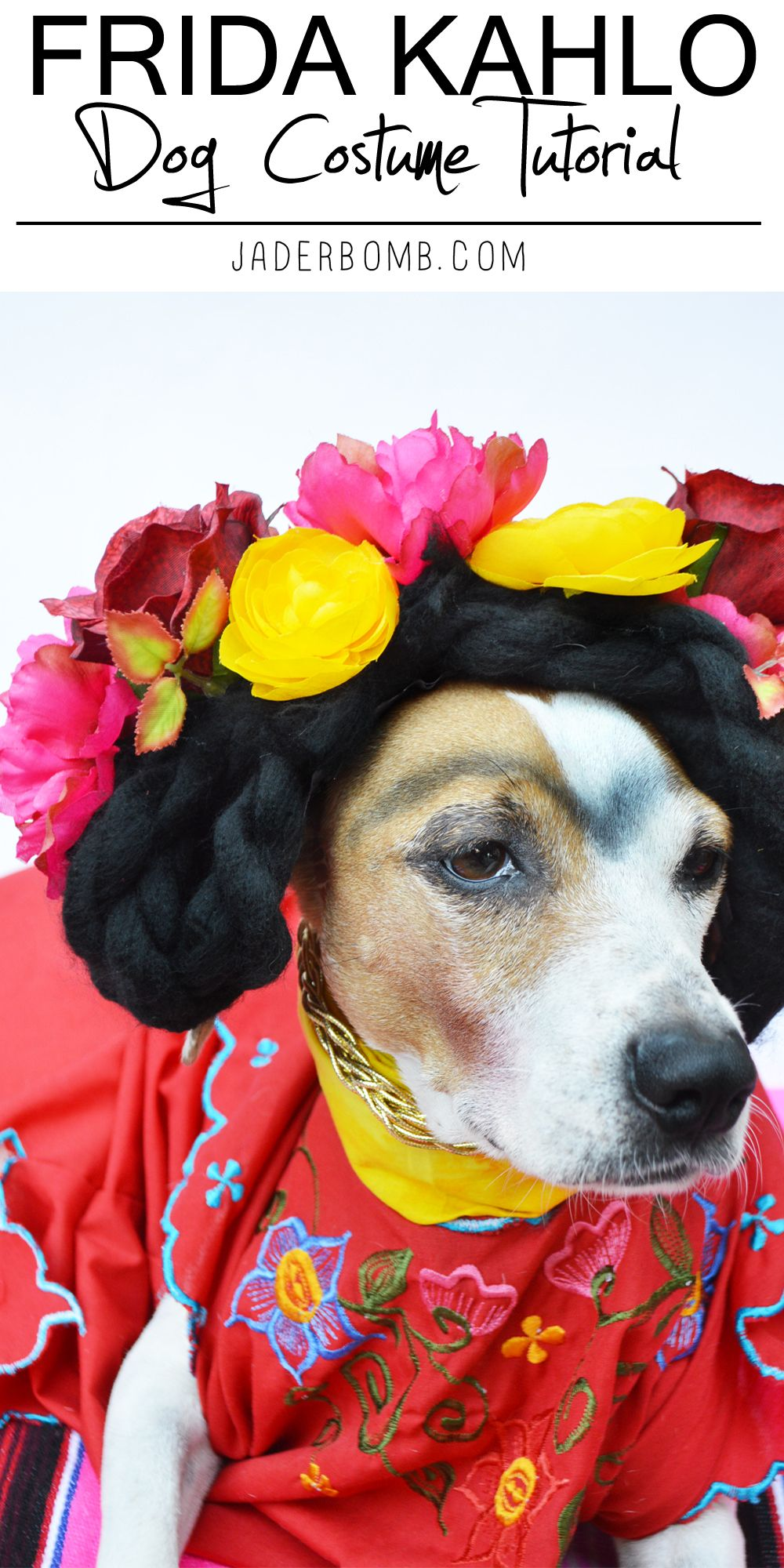 DIY Frida Kahlo dog costume tutorial from MichaelsMakers