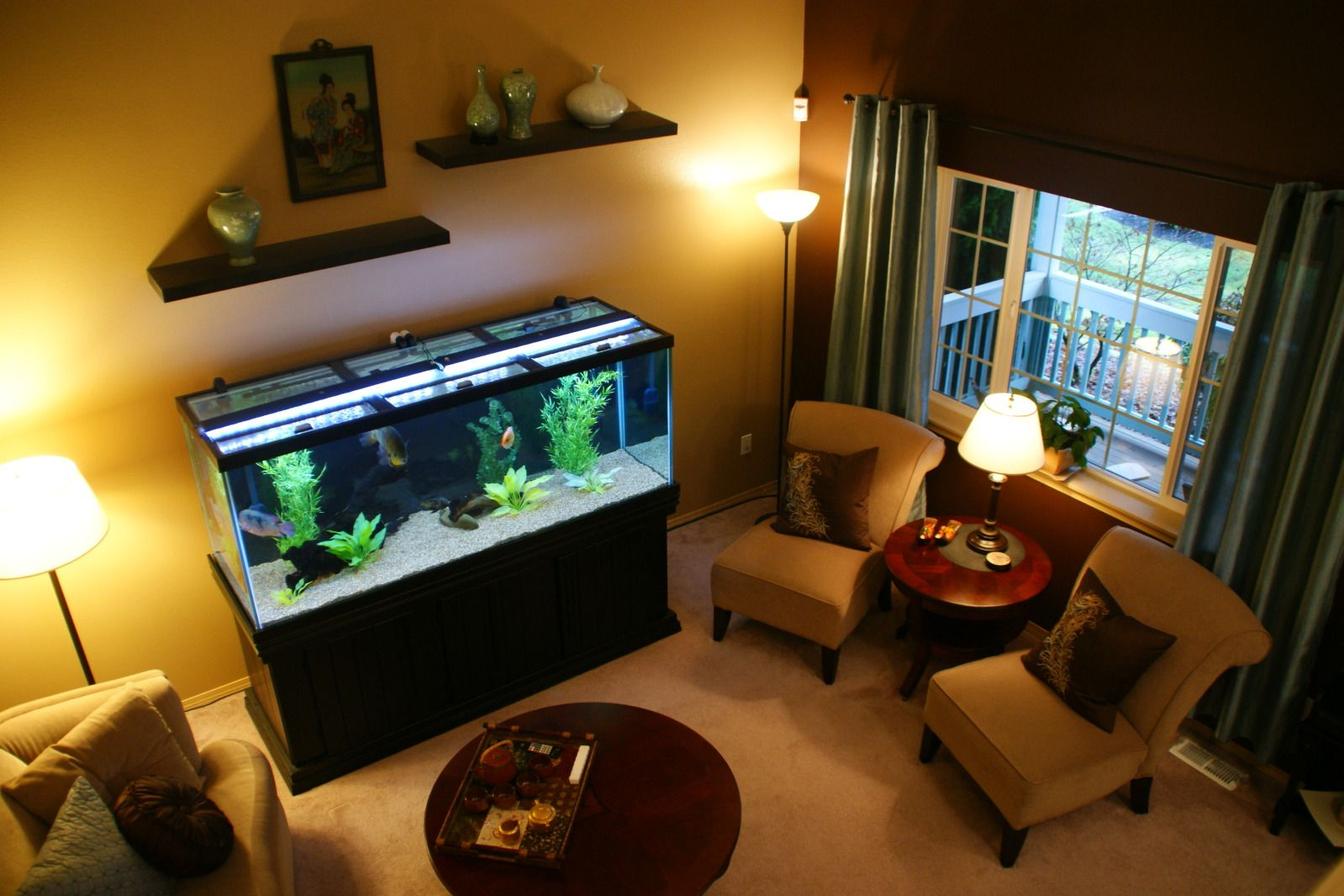transform the way your home looks using a fish tank | oscar fish