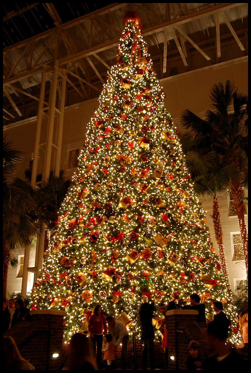 Christmas All About Christmas Pinterest Opryland