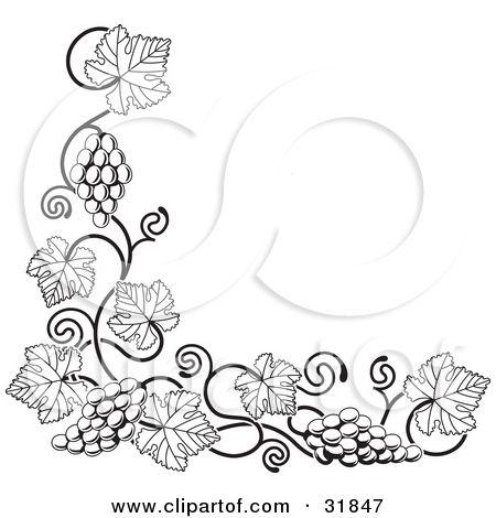 1000 images about grape vine art on pinterest grape vines