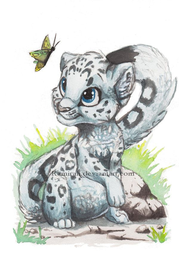 baby snow leopard drawing cute leopard drawing baby snow