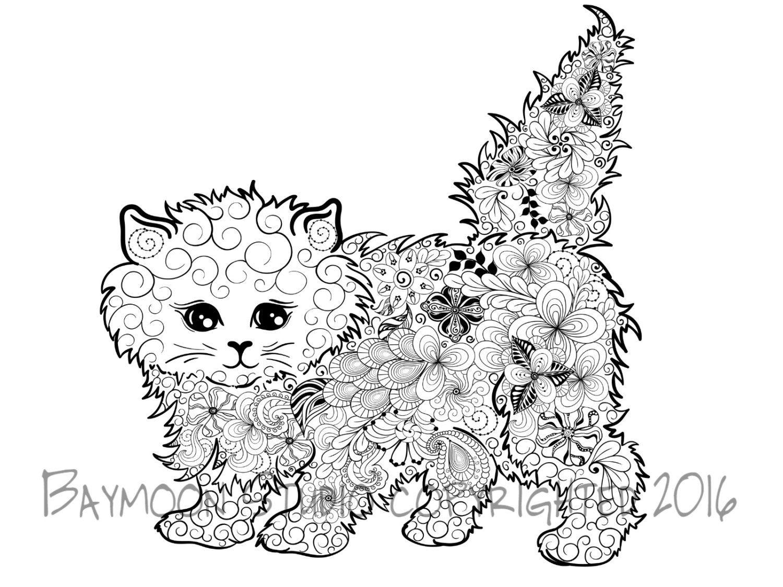 Gatito Fluffy Para Colorear Pagina Gato Por Baymoonstudio