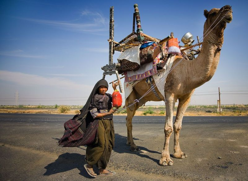 Gujarat Nomads India Photo By Annabelle Breakey