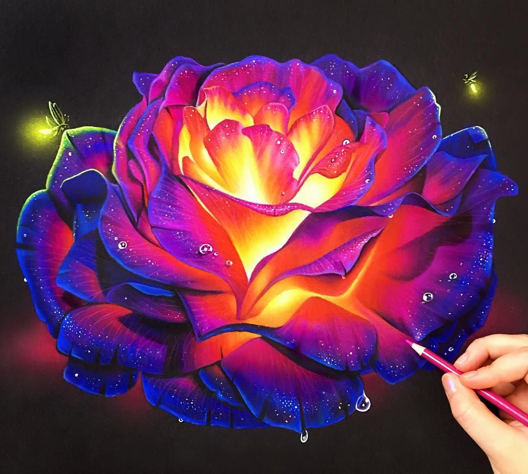 Colored pencil glowing rose on black paper! The best way