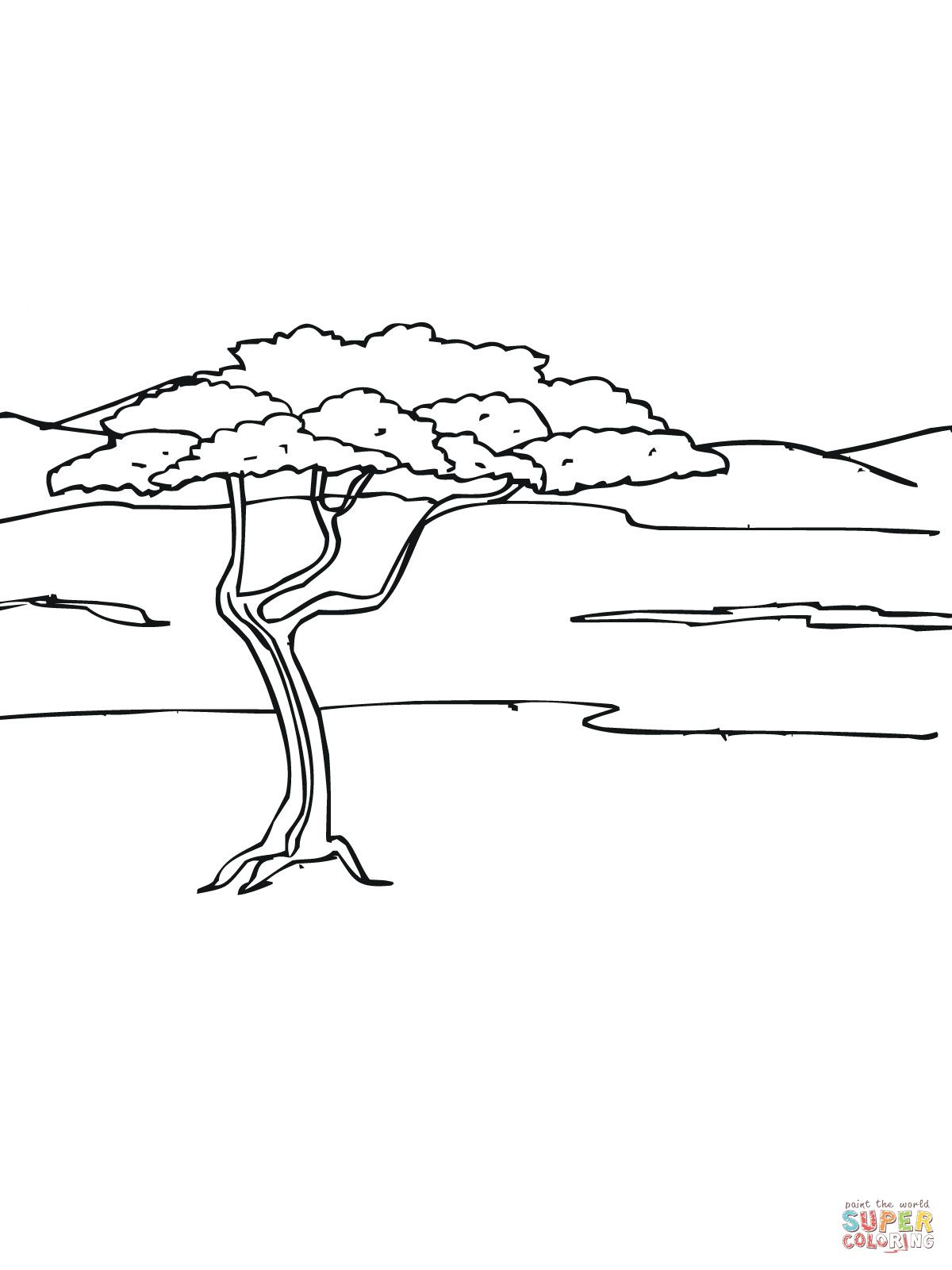 Acacia Tree In Savanna Coloring Page