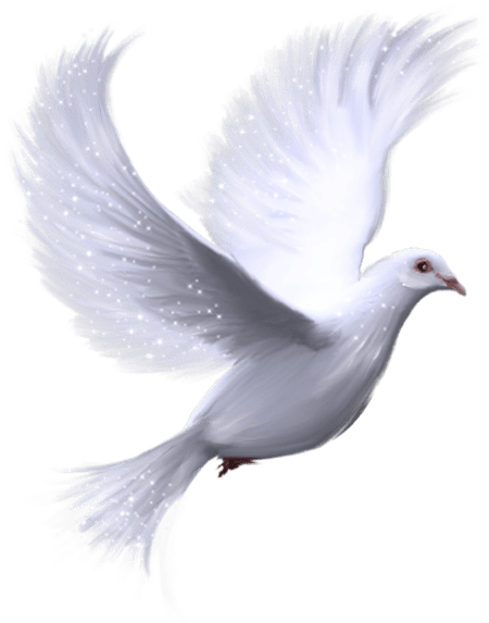 Dove png cliparts Email This BlogThis! Share to Twitter