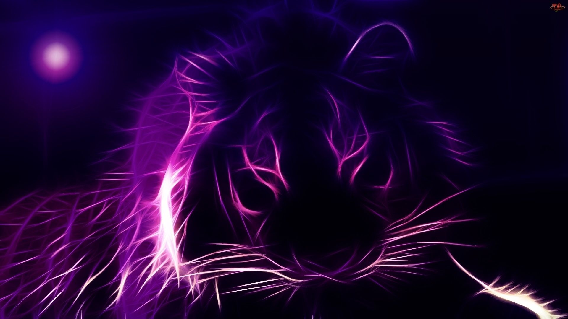 Colorfull Animal 3D HD 24 46440 Cool Wallpapers HD HD