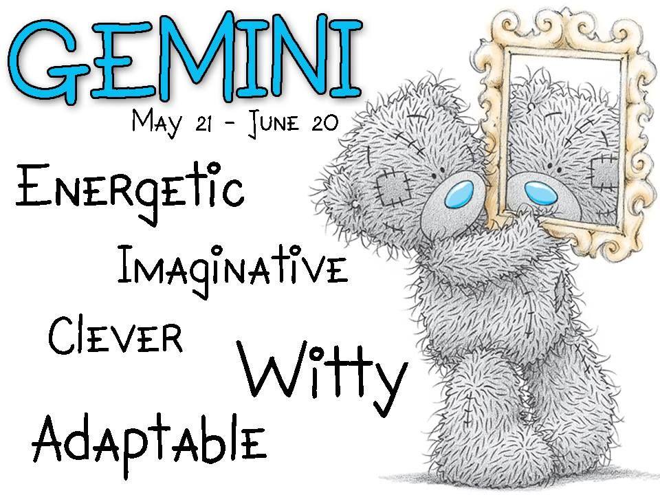 ʕ •́؈•̀ ₎♥ Star sign May 21June 20 TEDDY BEAR