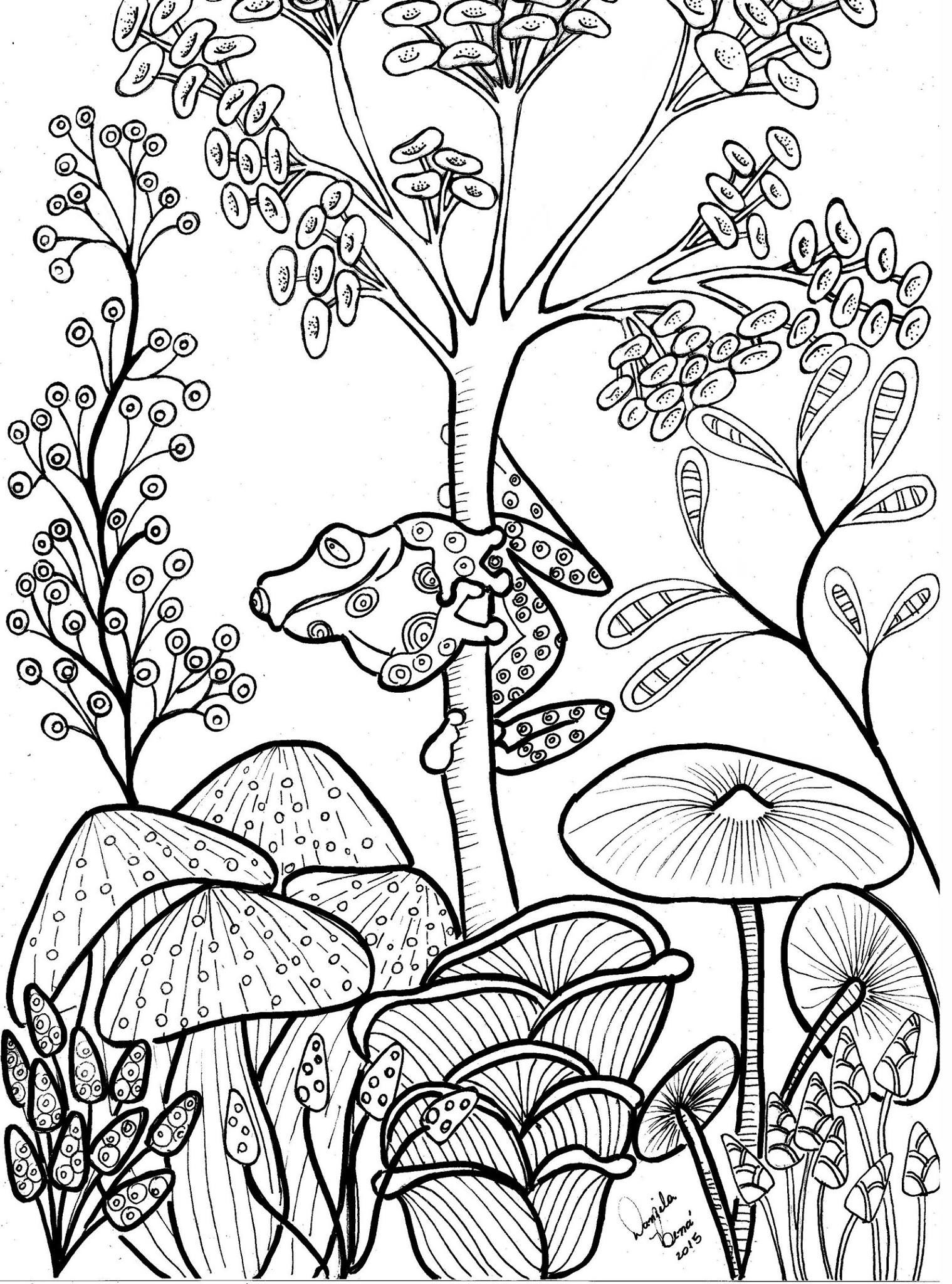 Cute tree frog and mushrooms Coloring page Floral