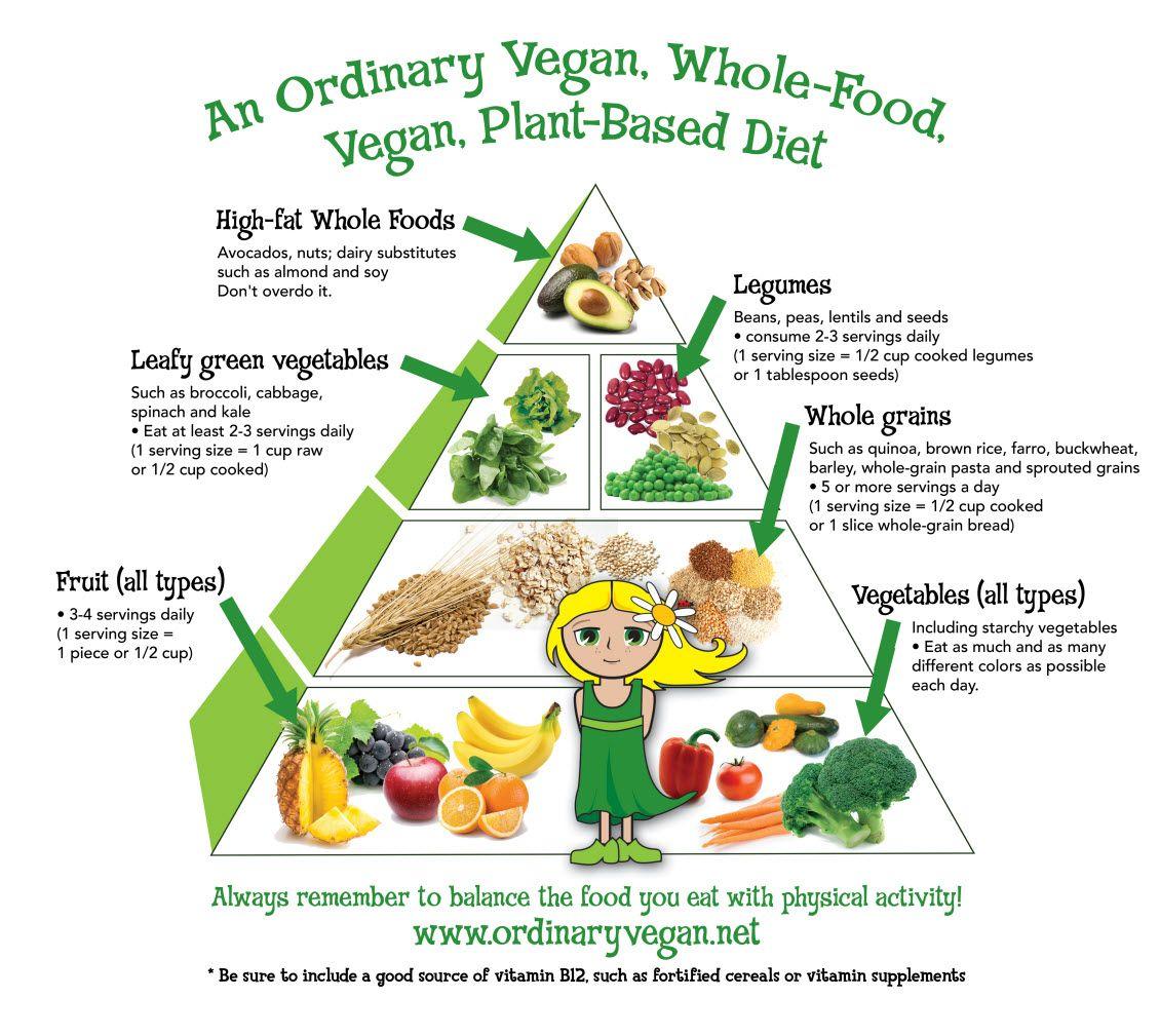 An ordinary vegan, whole food vegan, plant based diet