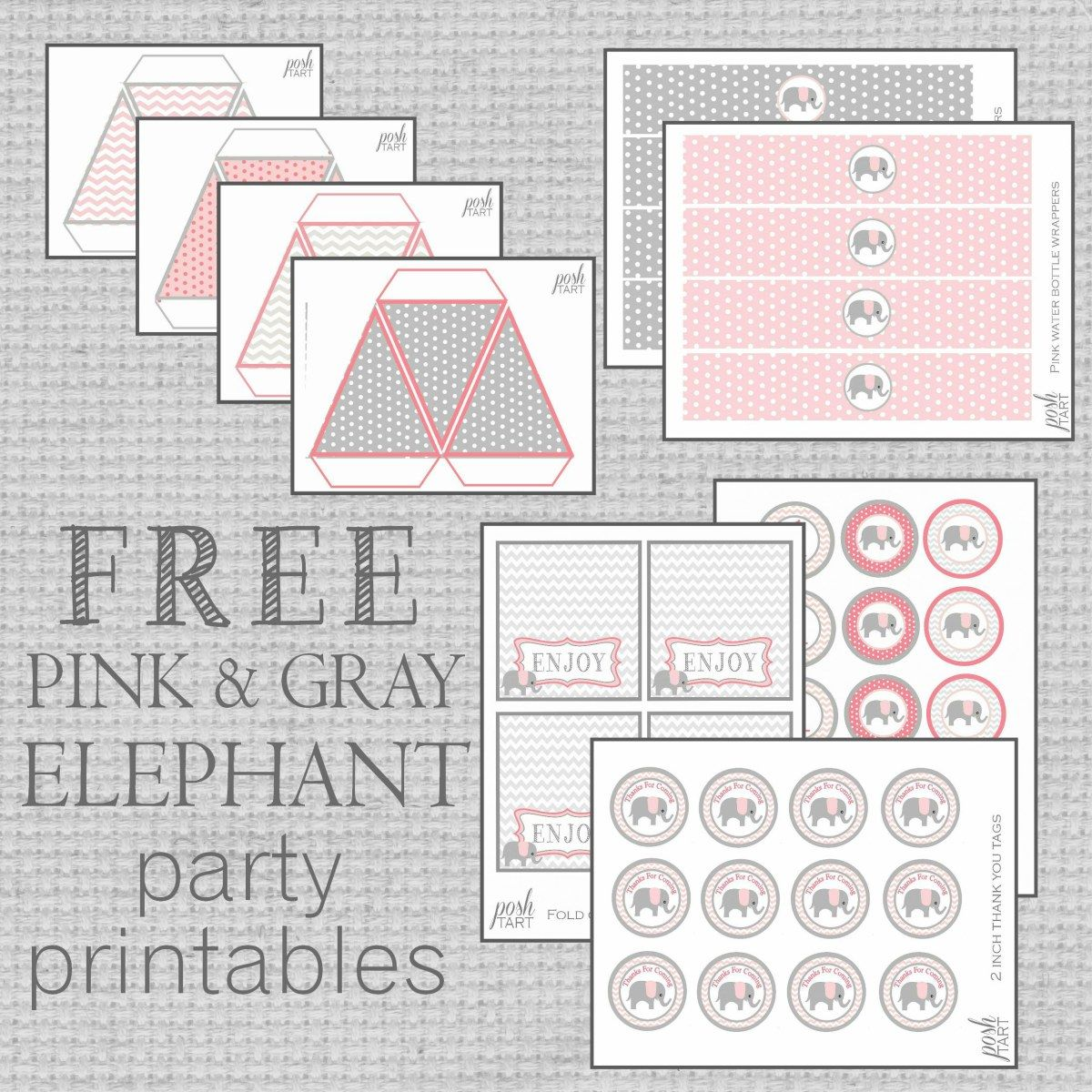 Pink Amp Gray Elephant Party