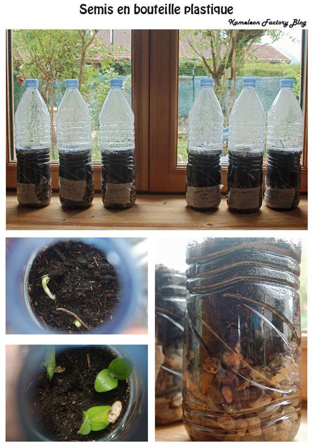 Faire des semis dans des bouteilles plastique? La bonne