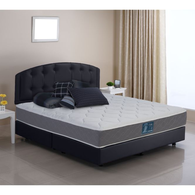 Wolf Echo Flippable Firm Queen Size Innerspring Mattress Black