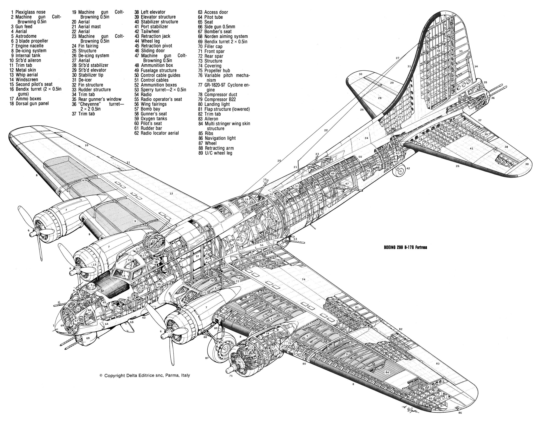 Boeing299b17gflyingfort