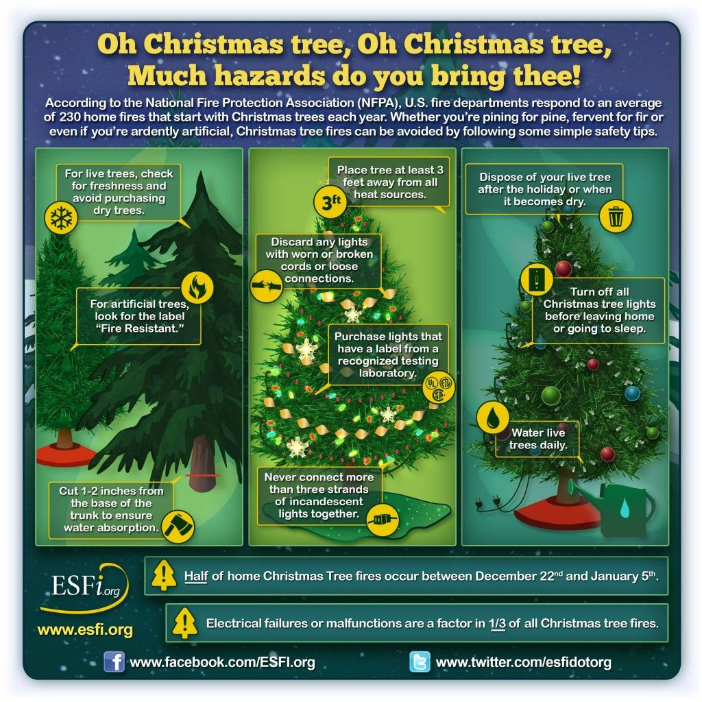 Tips For Safe Christmas Decorating Safety, Christmas