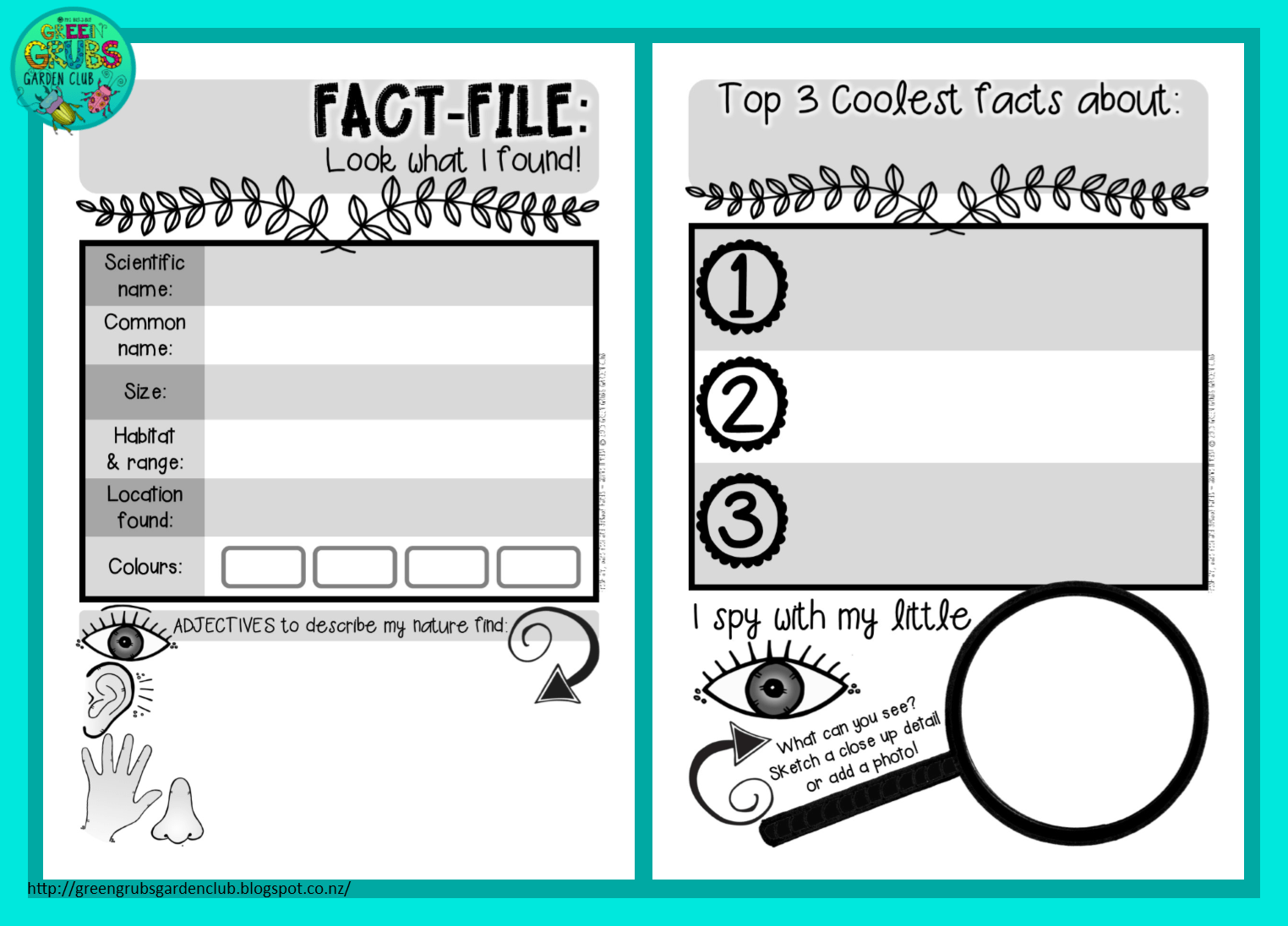 Free Printable A Fact File Template For Recording The Details Of Your Special Nature Finds