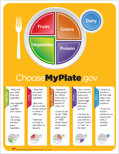 myplate Yahoo Image Search Results Diet Pinterest