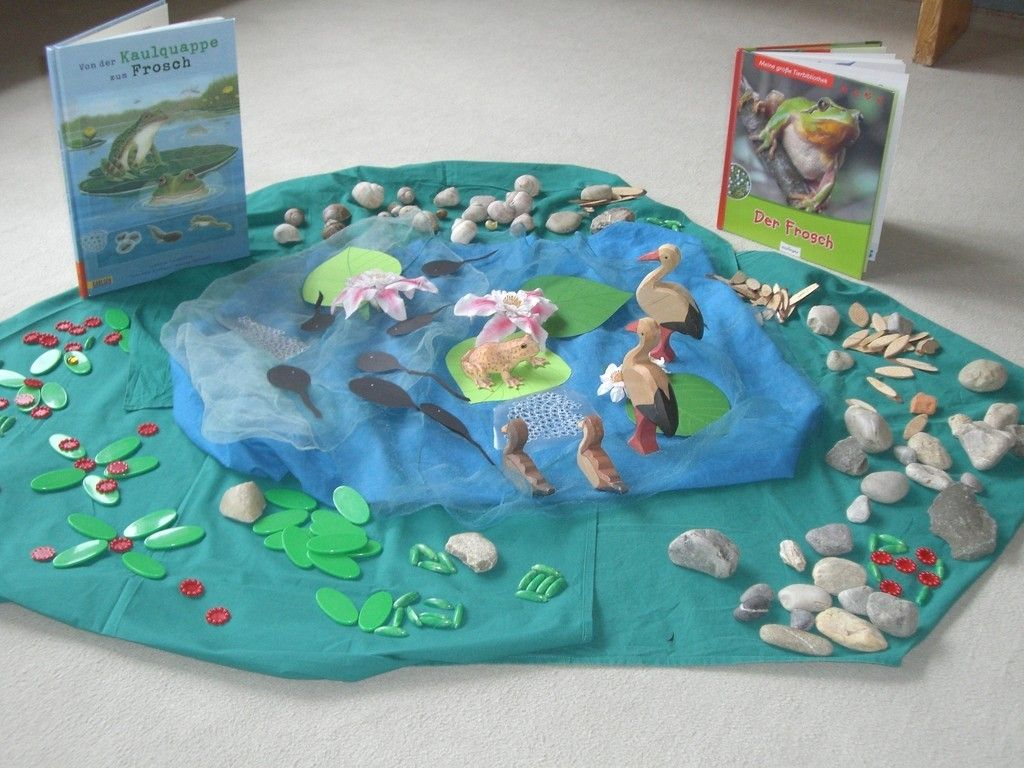 Bildergebnis Fur Thema Frosch Kindergarten