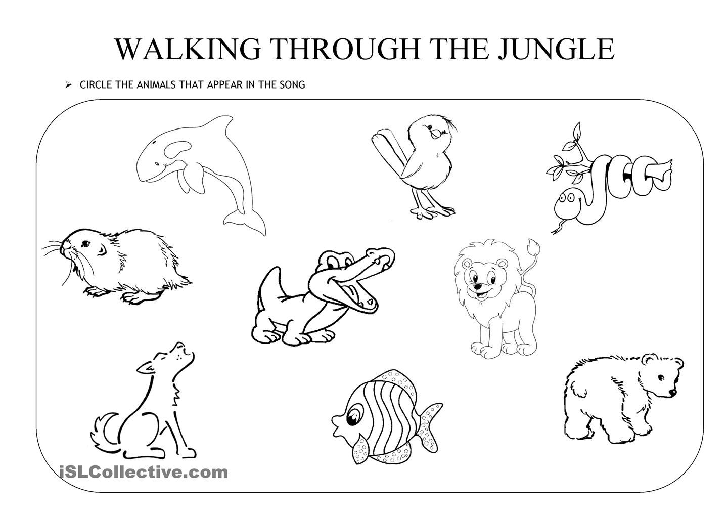 Walking Through The Jungle An Activity To Go With The
