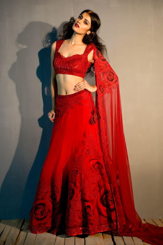 Beautiful Rose lehenga with crystal embellished blouse and