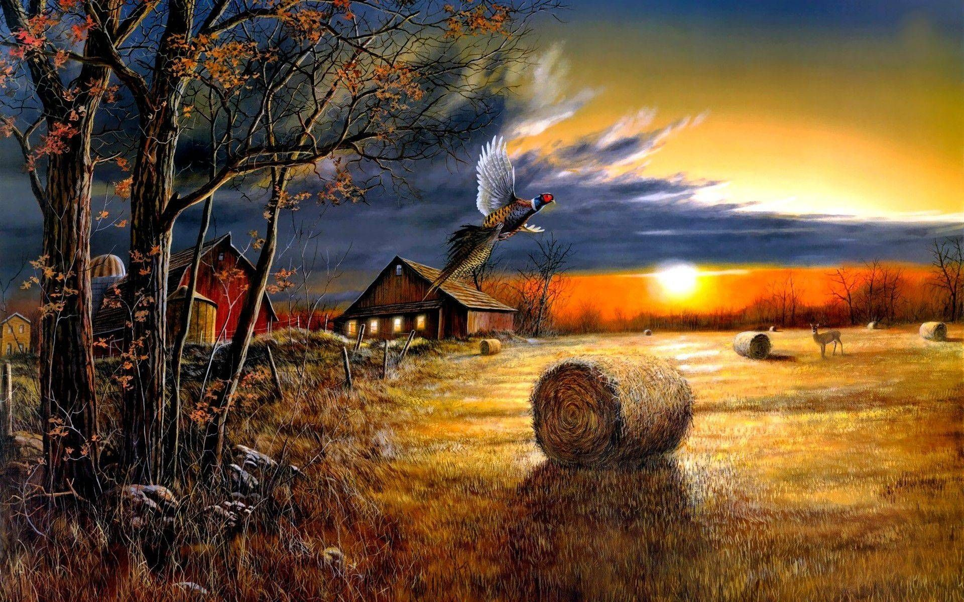 Farm Sunset Wide Desktop Background wallpaper free