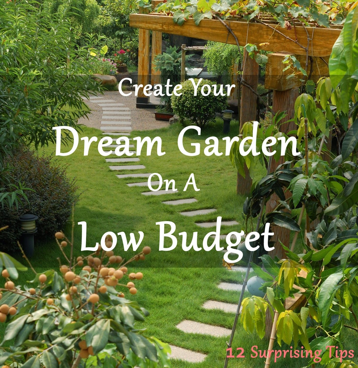 Create Your Dream Garden On A Low Budget With These 12