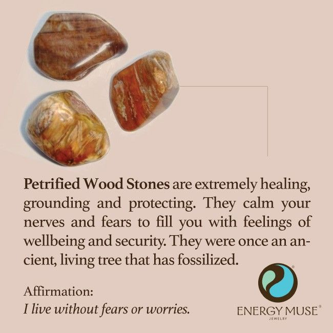 Petrified Wood On Pinterest Agates Amethyst Crystal And
