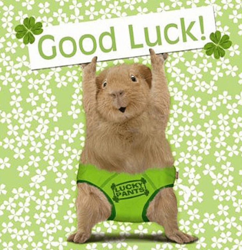 Hey, I wanted to Wish You Good Luck today! Why? Because