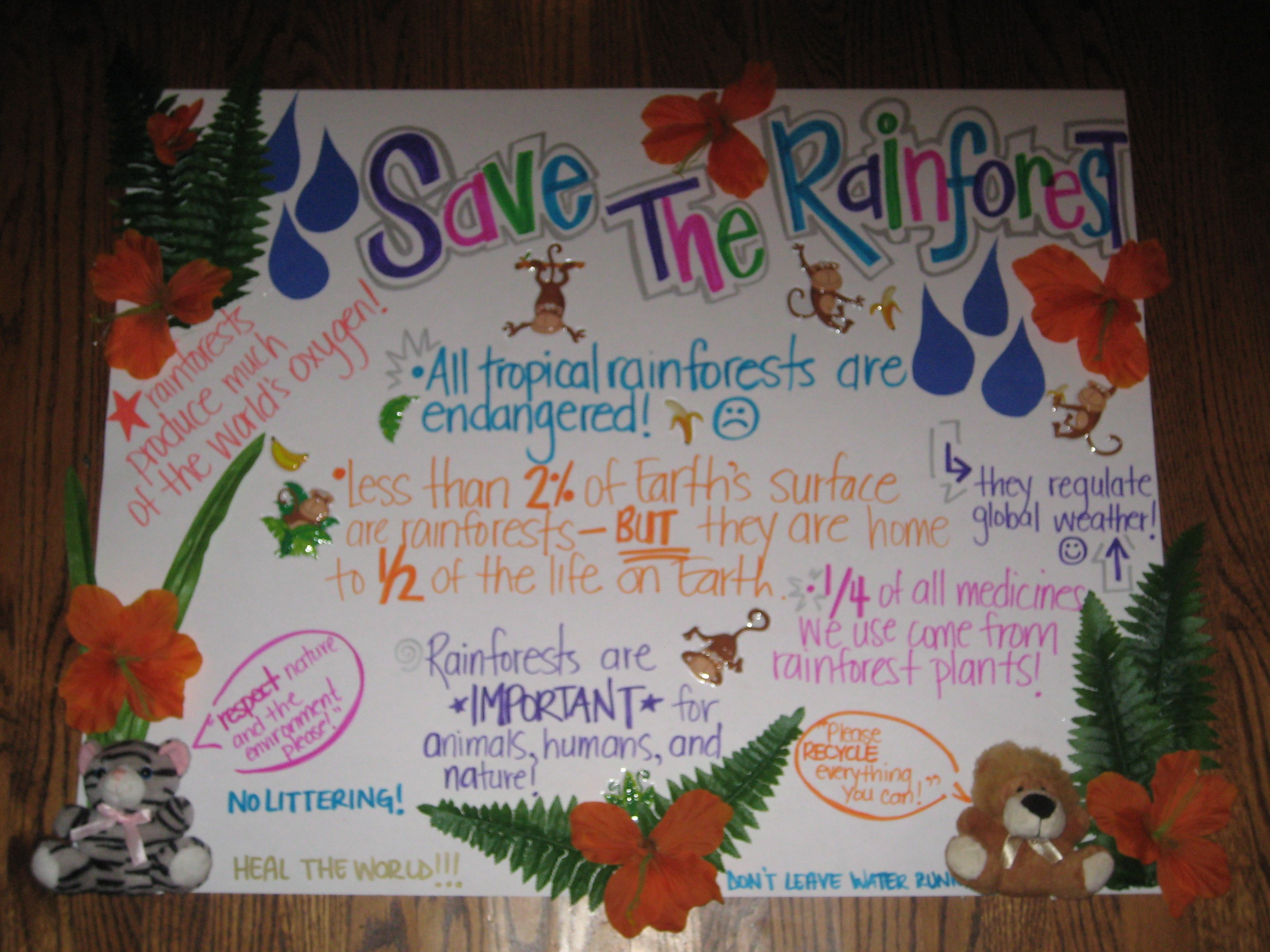 Save the rainforest project poster Teaching Ideas