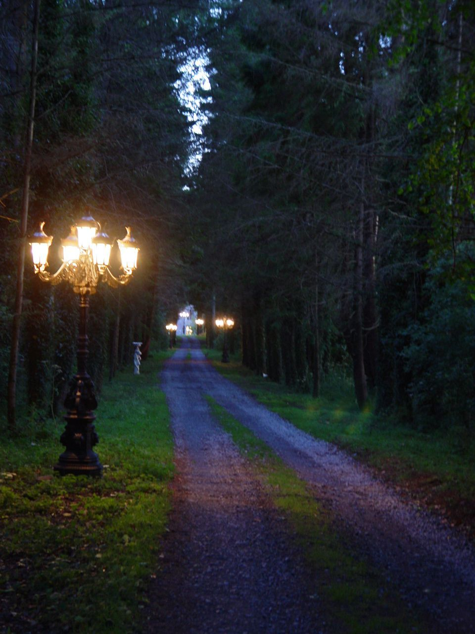 "Portlick Castle, Ireland. ""The Long Driveway at Dusk"
