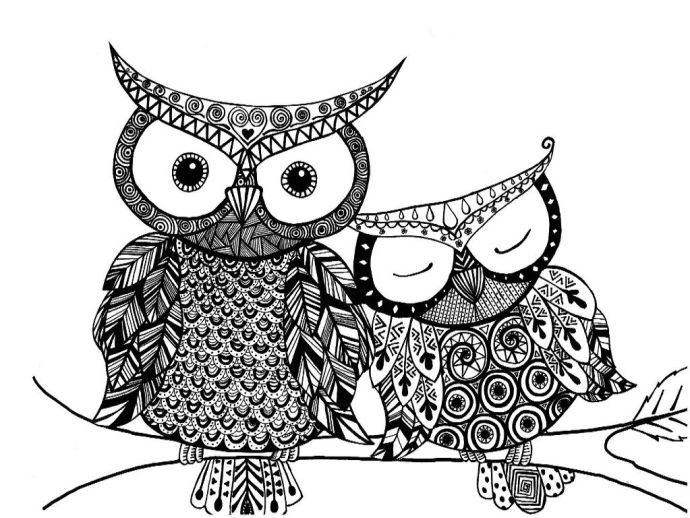 Owl Coloring Pages Printable And Book To Print For Free Find More Online Kids S Of