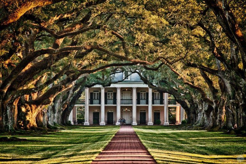 Oak plantation an abandoned plantation in louisiana