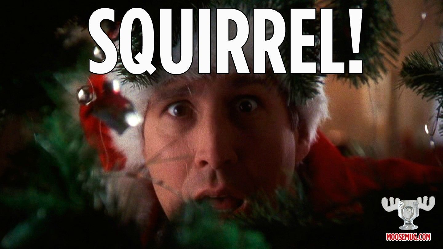 Squirrel! Christmas Vacation quote, classic movie