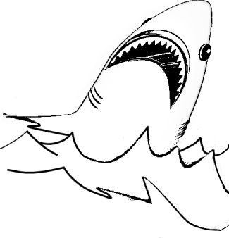 coloring pages sharks and education on pinterest