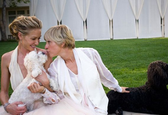 Ellen DeGeneres's Maltese-poodle Mix, Wolf, Was Front And